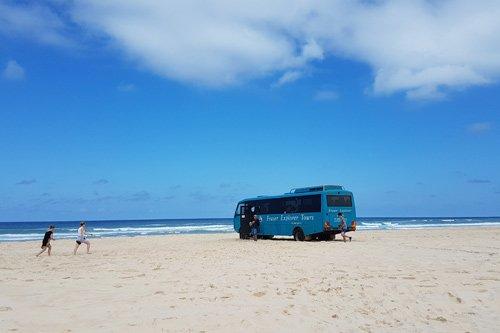 Fraser Island Tour