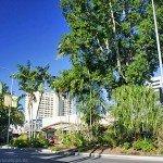 Die beste Reisezeit für die Route Cairns - Brisbane