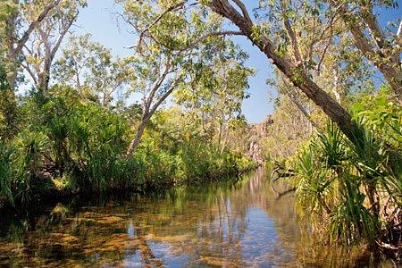 Artikel und Reisetipps zum Northern Territory