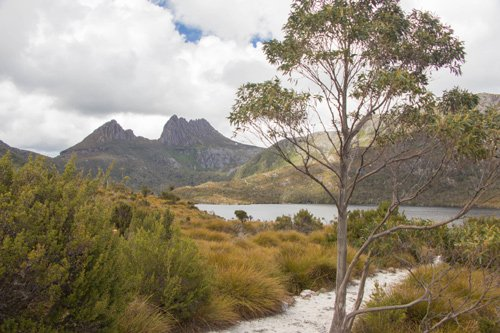 Cradle Mountain Tasmanien